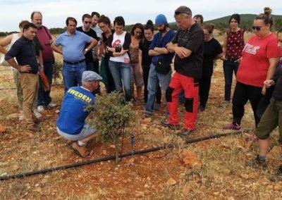 Visita de futuros emprendedor@s. Plantación de trufas, Briongos de Cervera.
